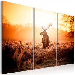 Billede - Deer in the Sun I