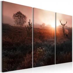 Billede - Deer in the...