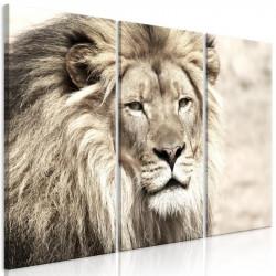 Billede - The King of...