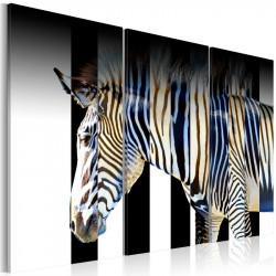 Billede - Stripes