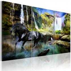 Billede - Horse on the...