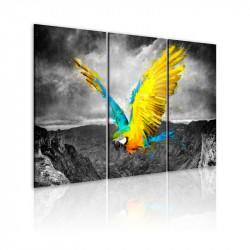 Billede - Bird-of-paradis