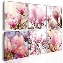 Billede - Southern magnolias