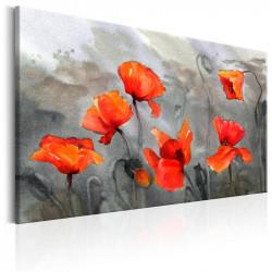 Billede - Poppies...