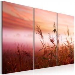 Billede - A silent meadow