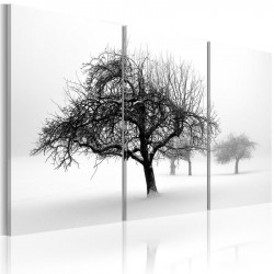 Billede - Trees submerged...