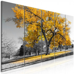 Billede - Autumn in the...