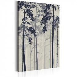 Billede - Forest In Fog
