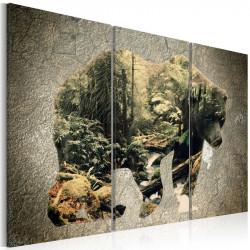 Billede - The Bear in the...