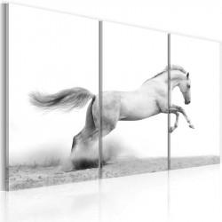 Billede - A galloping horse