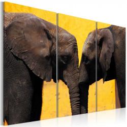 Billede - Elephant kiss