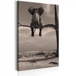 Billede - Elephant in the...