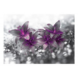 Fototapet - Secret of the Lily
