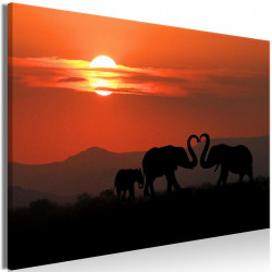 Billede - Elephants in Love...