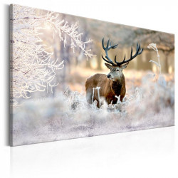 Billede - Deer in the Cold
