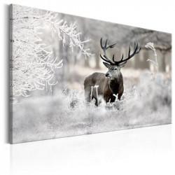 Billede - Lonely Deer