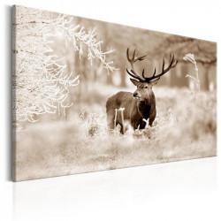 Billede - Deer in Sepia