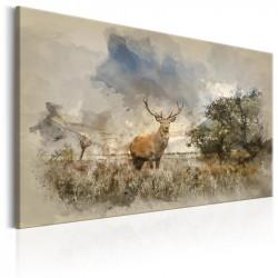 Billede - Deer in Field