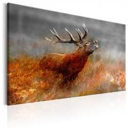 Billede - Roaring Deer