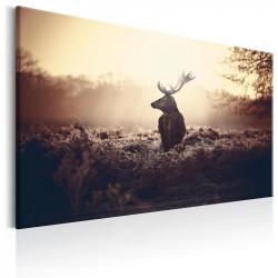 Billede - Lurking Deer