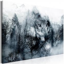 Billede - Mountain Predator...