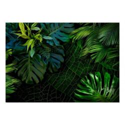 Fototapet - Dark Jungle