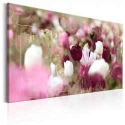 Billede - Meadow of Tulips