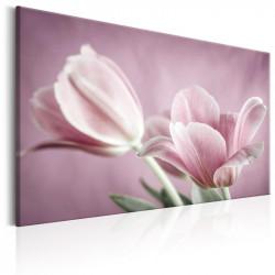 Billede - Romantic Tulips