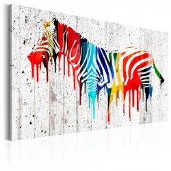 Billede - Colourful Zebra