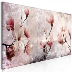 Billede - Magnolia Charm (1...
