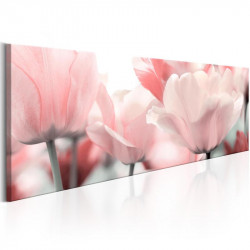 Billede - Pink Tulips