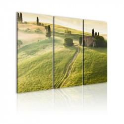 Billede - Under the Tuscan Sun