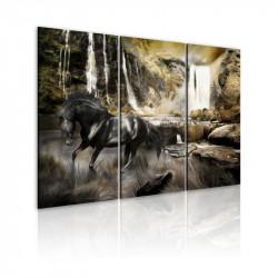Billede - Black horse and...