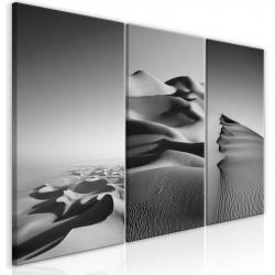 Billede - Desert Landscape...