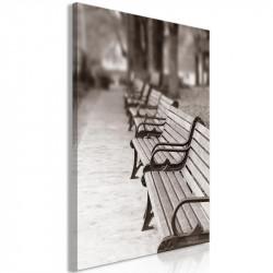 Billede - Park Benches (1...