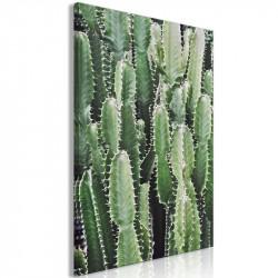 Billede - Cactus Garden (1...