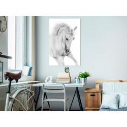 Billede - White Horse (1...