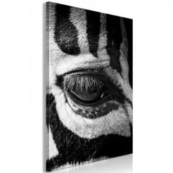 Billede - Zebra Eye (1...