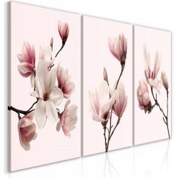 Billede - Spring Magnolias...