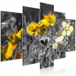 Billede - Yellow Poppies (5...