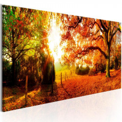 Billede - Magic of Autumn