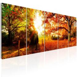 Billede - Enchanting Autumn