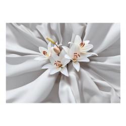Fototapet - Sensual Lilies