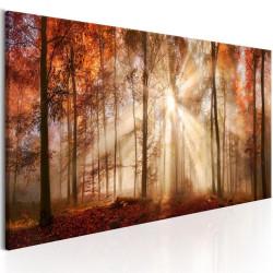 Billede - Autumnal Dawn