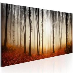 Billede - Autumnal Fog