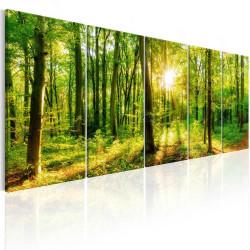 Billede - Magic Forest