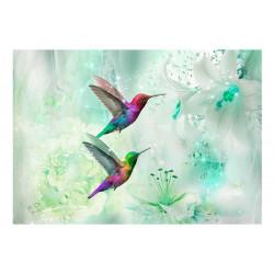 Fototapet - Colourful...