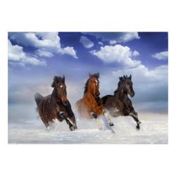 Fototapet - Horses in the Snow