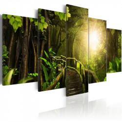 Billede - Magical Jungle