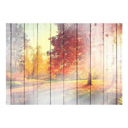 Fototapet - Autumn Sun